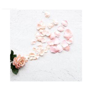 Flores Foamiran