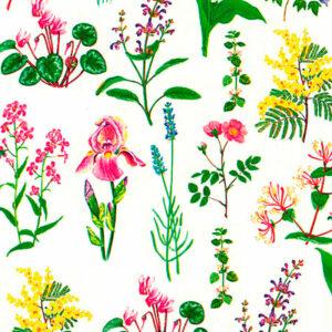 Papel encuadernación botánica